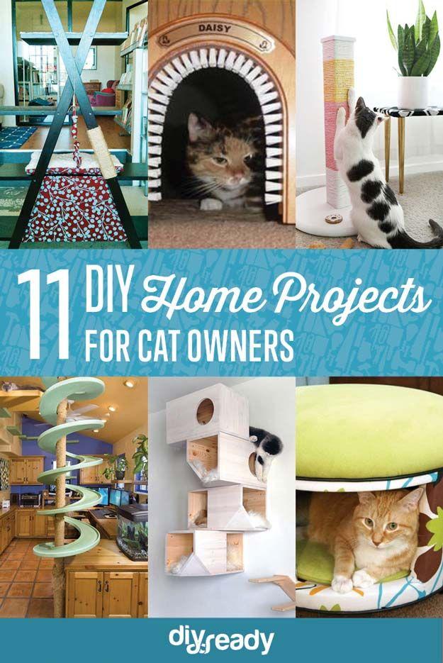 Fotografía - 11 creativos de bricolaje Home Proyectos para los dueños de gatos