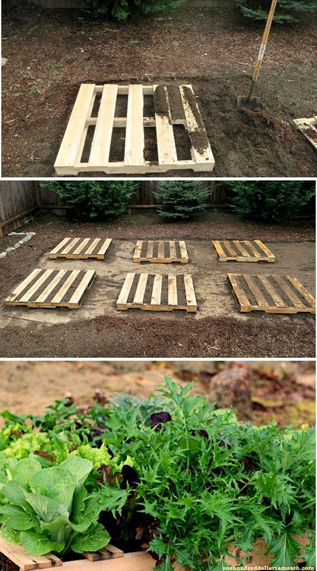 Vegetal DIY Pallet plantador de jardín | artesaniasdebricolaje.ru/pallet-projects-gardening-supplies/