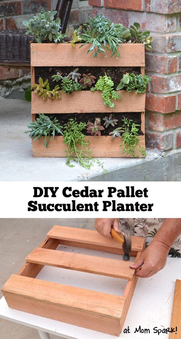 Bricolaje Instrucciones Planta carnosa Pallet Jardinera | artesaniasdebricolaje.ru/pallet-projects-gardening-supplies/