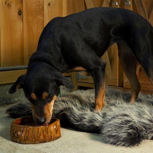 Faux Bois Tazón para el perro