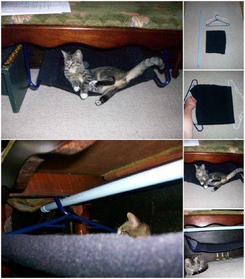 Gato Hamaca