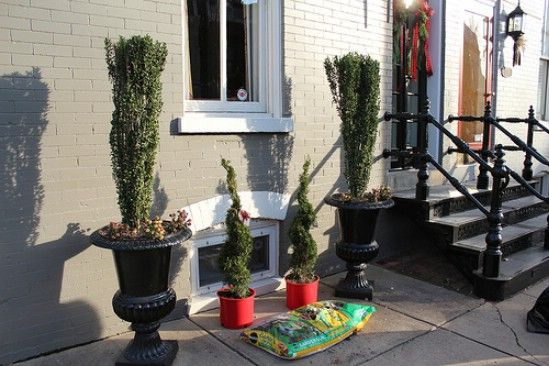 Las ramas y árboles - 60 maravillosamente festivas maneras de decorar su porche para Navidad