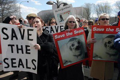 Los manifestantes marchan contra la caza de focas.