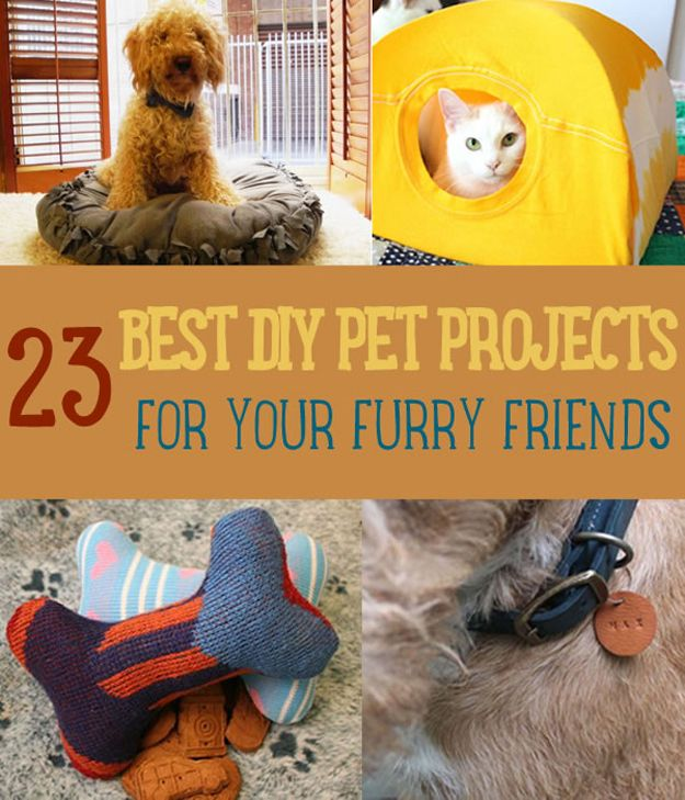 23 Mejores Proyectos de bricolaje para mascotas en sus peludos amigos | http://artesaniasdebricolaje.ru/best-diy-pet-projects-to-keep-your-furry-friends-happy/