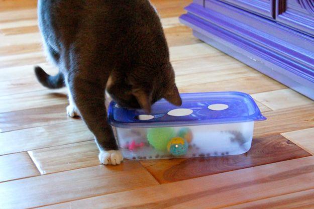 Diversión Bricolaje Mascotas proyectos de artesanía para Gatos | http://artesaniasdebricolaje.ru/best-diy-pet-projects-to-keep-your-furry-friends-happy/