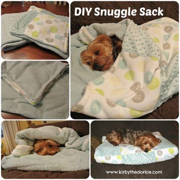 Lindo y fácil de Proyectos de mascotas para perros | http://artesaniasdebricolaje.ru/best-diy-pet-projects-to-keep-your-furry-friends-happy/