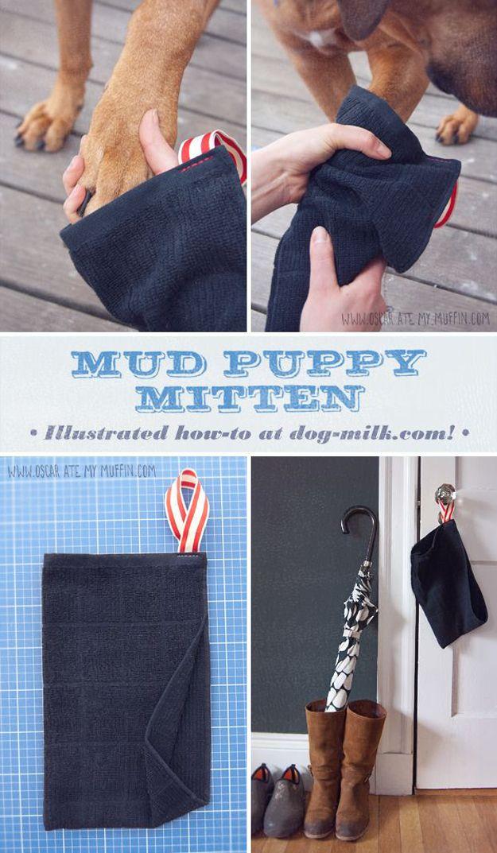DIY fácil Proyecto Craft para cachorros | http://artesaniasdebricolaje.ru/best-diy-pet-projects-to-keep-your-furry-friends-happy/