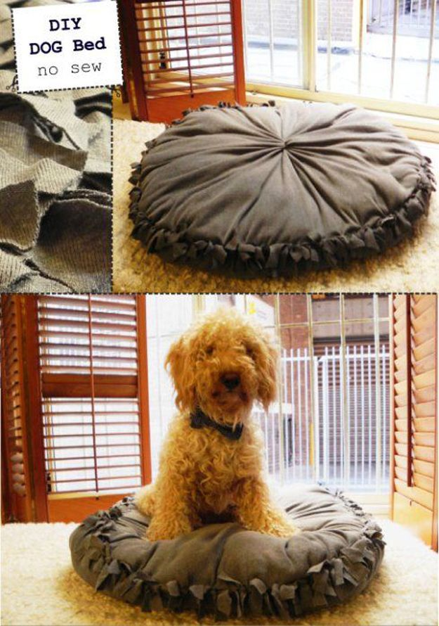 No Proyecto Pet Sew DIY para perros | http://artesaniasdebricolaje.ru/best-diy-pet-projects-to-keep-your-furry-friends-happy/