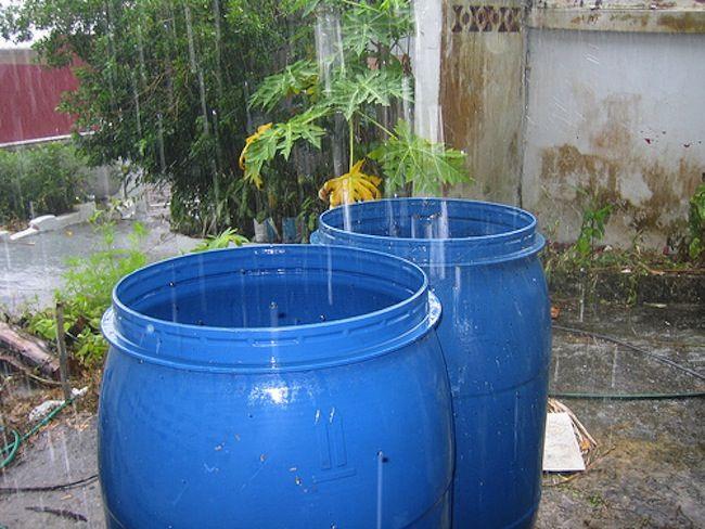 Consejos verdes para el hogar - El agua de lluvia Colección