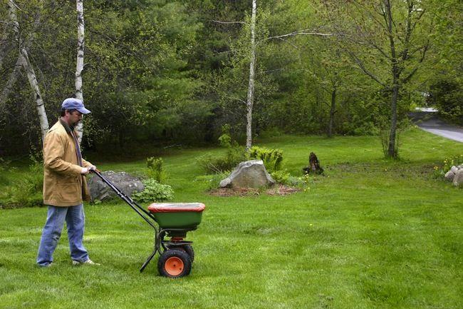Consejos verdes para el Hogar - Fertilizantes