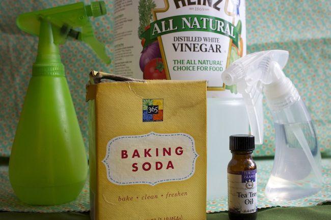 Consejos verdes para el hogar - Productos de limpieza hechos en casa