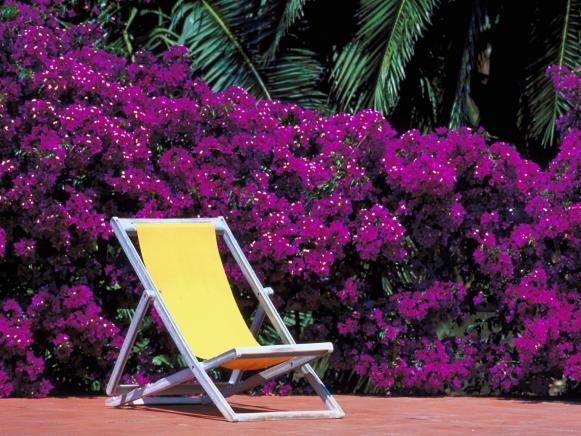 Fotografía - Limpieza de muebles de exterior
