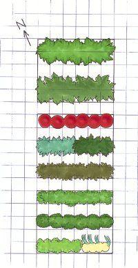 El diseño de un jardín de verduras