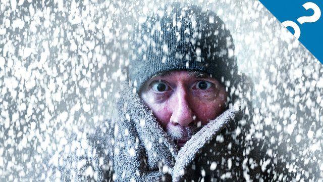 Lo que las cosas:?! 5 formas de sobrevivir a una tormenta de nieve