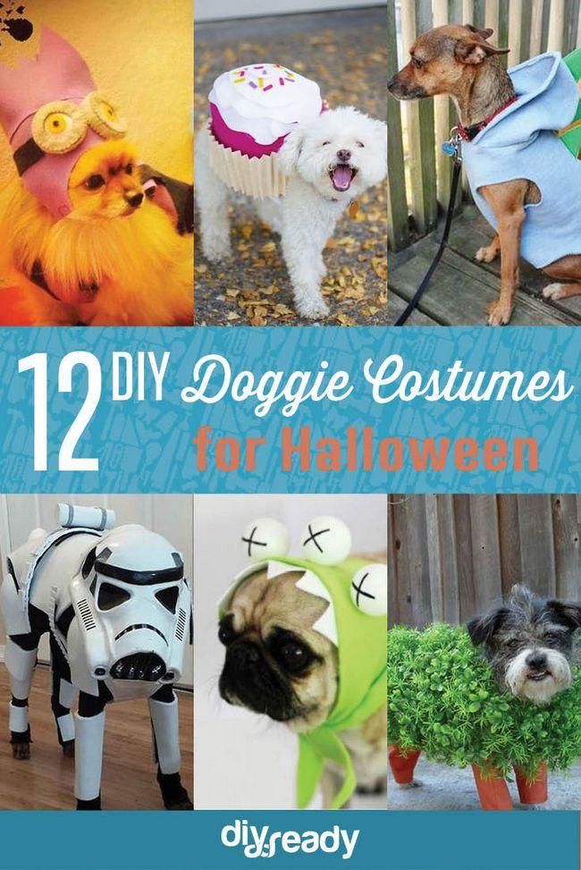 Fotografía - DIY Dog Costume Ideas + CONCURSO: ¿Cuál es la personalidad de vestuario de su perro