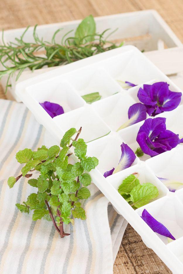 Frozen comestibles Flores DIY | artesaniasdebricolaje.ru/diy-flower-ice-cubes/