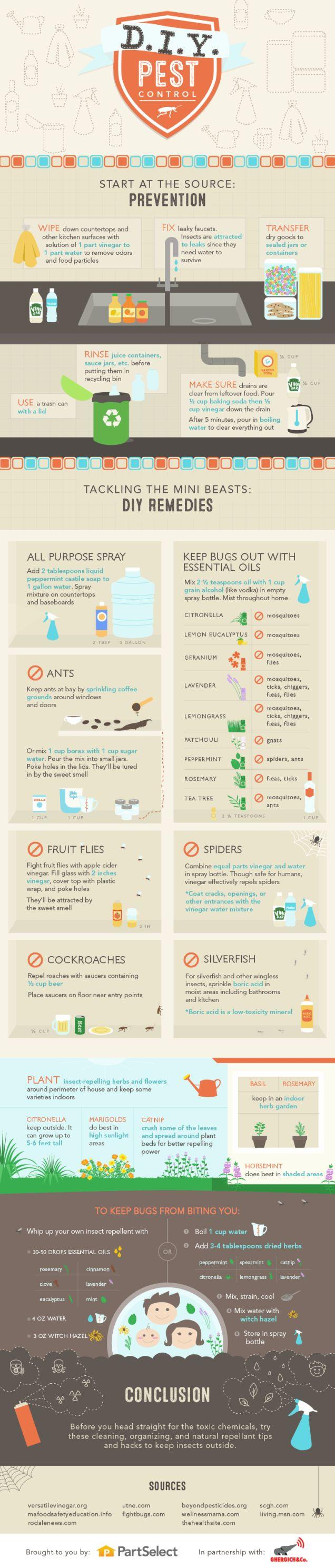 Bricolaje Pest recetas de control para un Bug gratuita Inicio