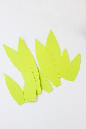 Las hojas de la piña
