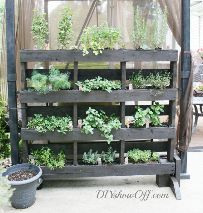 Fotografía - DIY Vertical Jardinería | 8 Proyectos de Small Space Jardinería