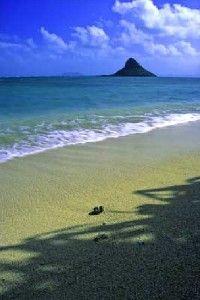 Fotografía - Las vacaciones familiares en Hawai
