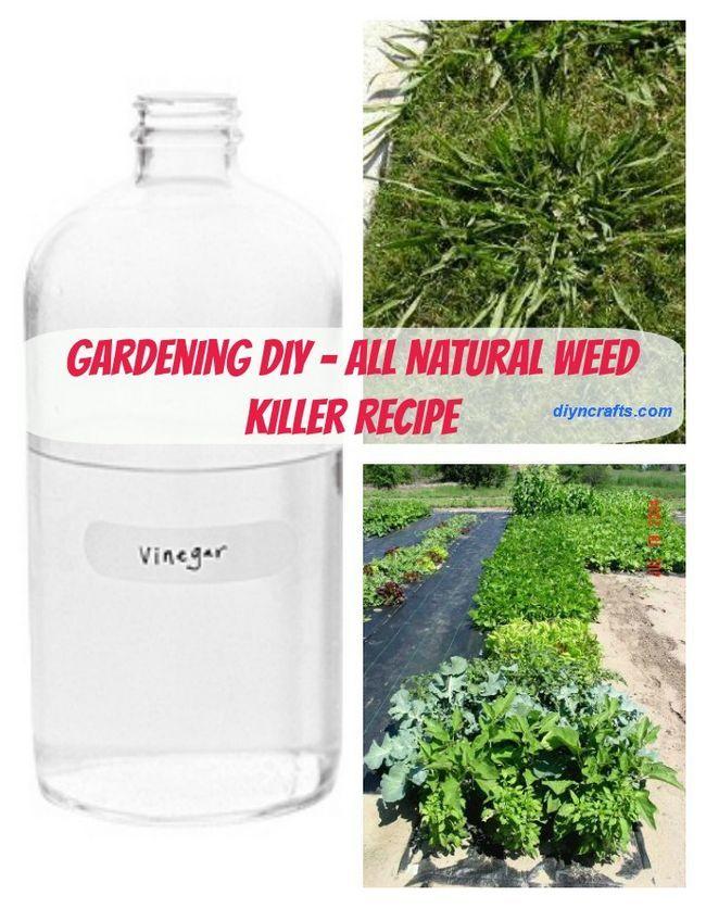 Jardinería Bricolaje - una manera segura y totalmente natural para deshacerse de las malas hierbas de jardín