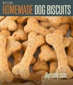 Hecho en casa galletas de perro   Receta e instrucciones