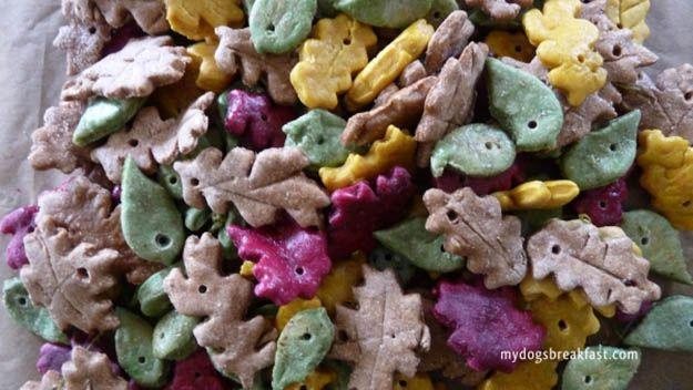 perro trata hoja de otoño, ver más en http://artesaniasdebricolaje.ru/homemade-dog-treats-fall-feast