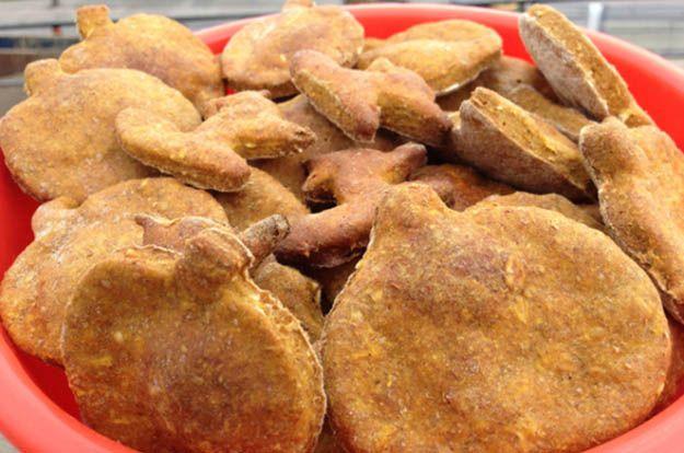 especias de calabaza perro trata de bricolaje, ver más a http://artesaniasdebricolaje.ru/homemade-dog-treats-fall-feast