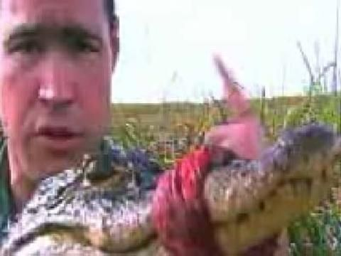 La experiencia de Jeff Corwin: El Gator Grab