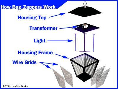 Cómo Bug Zappers Trabajo
