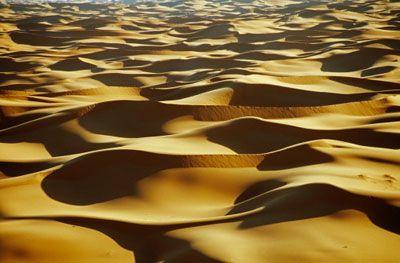 Fotografía - ¿Cómo funciona supervivencia en el desierto