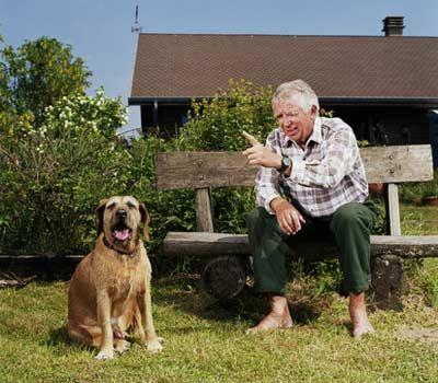 Fotografía - ¿Cuántas palabras entienden los perros?