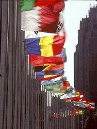 Fotografía - Cómo funciona naciones unidas