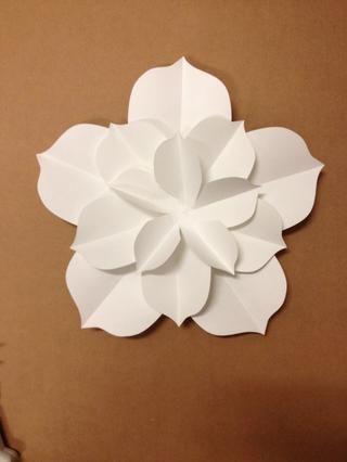 Repita los pasos para cada estilo de la flor de Rose. Usted tendrá que reunir 10 totales.