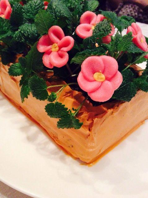 Cómo cocer al horno una receta de la torta de terciopelo creativa y deliciosa