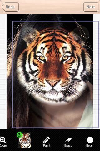 Mover, rotar y cambiar el tamaño de la cara del tigre de cerca de donde usted quiere que sea. Pero no es necesario ser preciso en este paso.