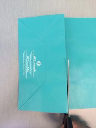 Coloque la bolsa plana con el lado de la marca hacia abajo y cortar a lo largo de la costura.