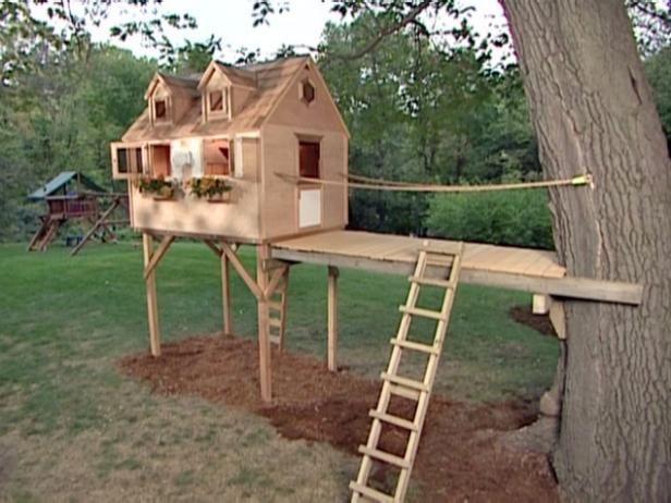 Fotografía - ¿Cómo construir un árbol fuerte