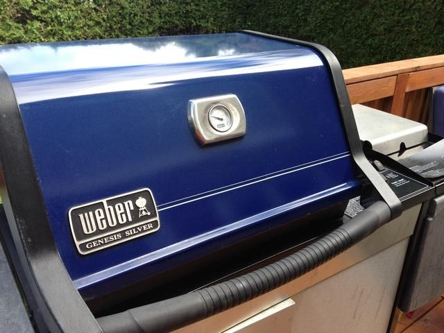 Compre una Weber! Éste tiene 10 años y va fuerte. Me refugio't protected it at all from the extreme weather conditions!