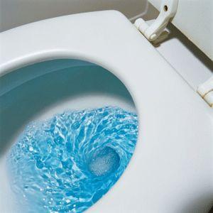 Hay innumerables productos que puede utilizar para eliminar las manchas de aseo.
