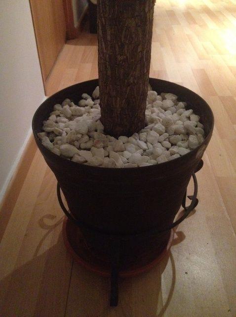 Cómo limpiar su ornamento del árbol's Stones
