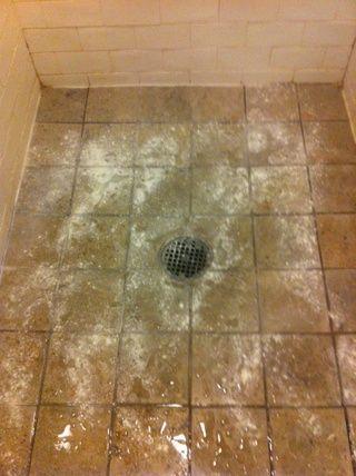 Prepare el azulejo para limpiarse por si se moja y aspersión Bon Ami en todas partes.
