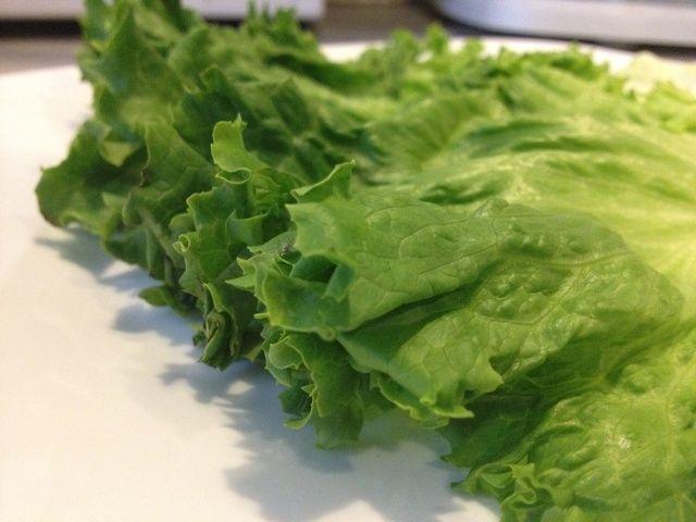 Lavar las hojas de lechuga y mancha la humedad con una toalla de cocina