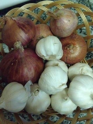 Cebollas y Ajo