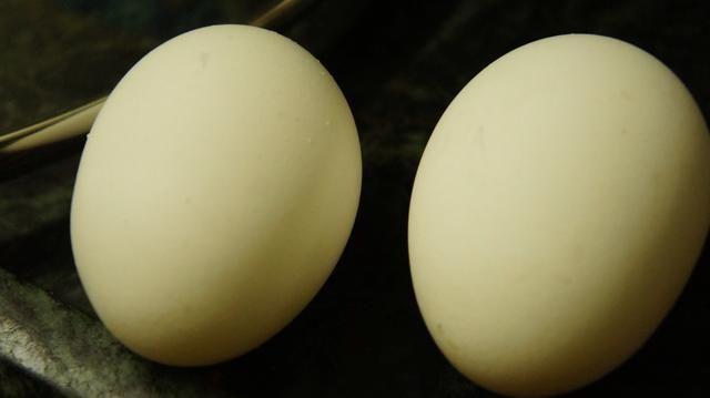 Tome 2 huevos ..