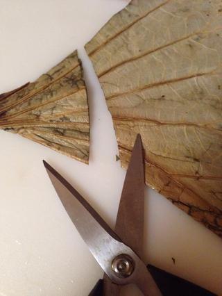 Hojas cortadas por la mitad y uno de 2 pulgadas de la parte inferior