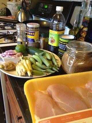 Preparar todos los ingredientes, sólo trozos más pequeños o cortes de pollo, lo que permite una cocción más rápida y el sabor más fresco posible.