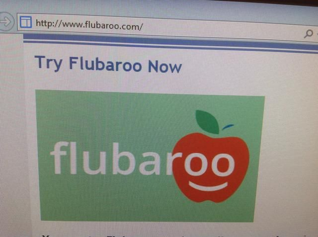 Ir a flubaroo.com