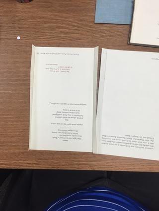La primera y última páginas tendrán dobles pliegues. Todas las demás páginas tienen pliegues individuales en el lado izquierdo.