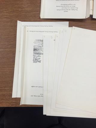 Dibuja las líneas y doblar cada página. Doble cada página a la izquierda.